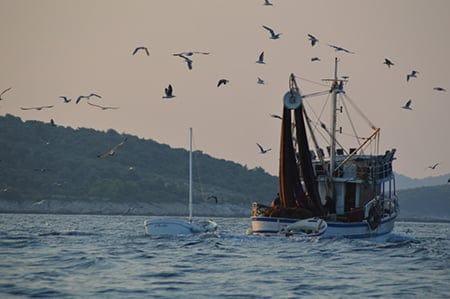 fishing boat passing